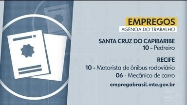 Agência do Trabalho oferece vagas de emprego em diferentes municípios - Há oportunidade tanto no Recife, quanto no interior do estado.