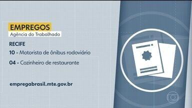 Confira vagas de emprego disponibilizadas nas Agências do Trabalho - Há oportunidades no Recife, em Petrolina e em outras cidades do estado.