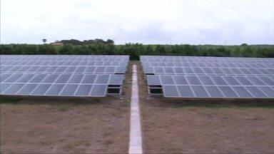 Energia solar chama atenção de produtores rurais em Alagoas - Energia limpa tem sido alternativa para redução de custos na produção.
