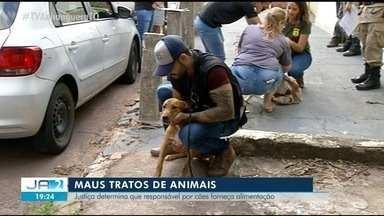 Justiça determina que responsável por cães resgatados em Araguaína forneça ração - Justiça determina que responsável por cães resgatados em Araguaína forneça ração