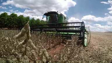 Assista ao bloco 01 do Caminhos do Campo do dia 09 de fevereiro de 2020 - Começa a colheita de soja no Paraná