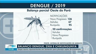 Sespa planeja ações de combate a doenças transmitidas pelo mosquito Aedes aegypti - Confira o balanço parcial dos casos de dengue, zica e chikungunya na região de Santarém.