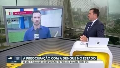 Noroeste do estado já tem quatro mil casos de dengue neste ano - Quatro pessoas morerram, em apenas 42 dias na região de São José do Rio Preto