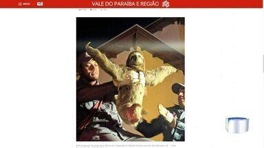 Bicho-preguiça 'faz pose' para foto ao ser resgatado por bombeiro em São Sebastião - Animal foi encontrado em uma casa no bairro São Francisco. Imagens do resgate viralizaram em redes sociais.