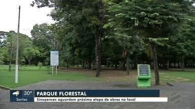 População aguarda melhorias na parte interna do parque Florestal de Sinop - População aguarda melhorias na parte interna do Parque Florestal de Sinop