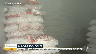 Folia: Mais de 500 toneladas de gelo são vendidas no carnaval da capital baiana - Saiba qual é a rota do gelo.