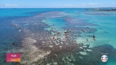 Turistas aproveitam cenário paradisíaco em Alagoas - No passeio às piscinas naturais, moradores oferem petiscos e bebidas usando boias como bandejas