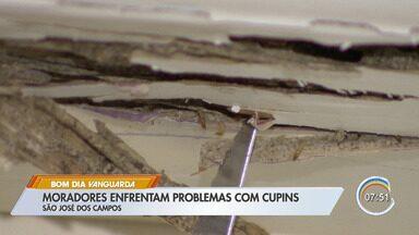 Moradores reclamam de infestação de cupins - Moradores de condomínios em São José reclamam de infestação de cupins e danos materiais com a invasão.