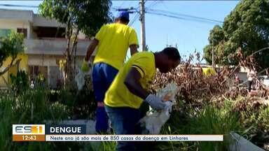 Linhares já registra mais de 850 casos de dengue em 2020 - Supervisora de endemias fala sobre os cuidados que devem ser tomados.