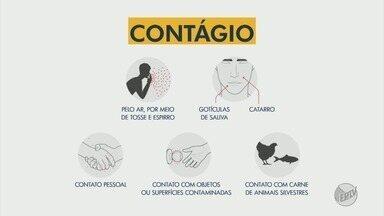 Confira dicas de como se prevenir do novo coronavírus - Confira dicas de como se prevenir do novo coronavírus