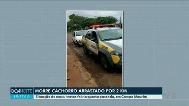 Morre cão arrastado por veículo em Campo Mourão - Idoso disse que amarrou o animal ao veículo e esqueceu. Ele foi detido, ouvido e liberado para responder em liberdade.