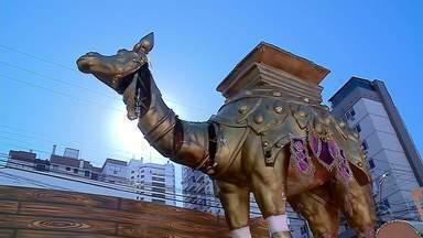 Escolas de samba de Passo Fundo se preparam para o desfile de carnaval - Festa vai contar a história da cidade.