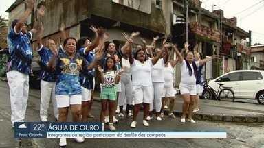 Integrantes do carnaval da Baixada Santista participam do desfile da campeã de São Paulo - Águia de Ouro levou o título e teve participação de um grupo da região.