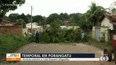 Homens andam à canoa e jacaré aparece em ruas de Porangatu após forte chuva; vídeo - Imagens também mostram jacaré na cidade e água dentro da Prefeitura. Segundo Corpo de Bombeiros, apesar do temporal ter causado estragos, ninguém se feriu.