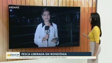 Em Rondônia, pesca de sete espécies volta a ser permitida - Período de defeso para sete espécies encerrou no domingo