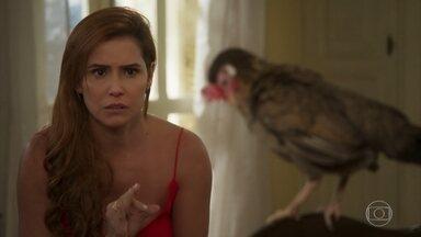 Alexia pensa em continuar na Labrador apesar de Renzo - Ela afirma a Felipe que ama Zezinho e só quer continuar no trabalho para investigar Renzo
