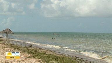 Banhistas descumprem decreto de fechamento de praias e entram no mar - Foram feitos flagrantes em diferentes pontos do litoral pernambucano.