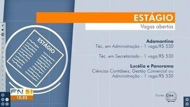 Estudantes têm oportunidades de estágio na região de Presidente Prudente - Interessados podem ter acesso às vagas no Ciee.