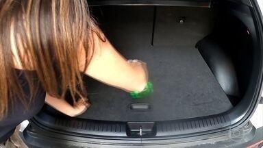 Entenda a importância de higienizar os tapetes do carro - Entenda a importância de higienizar os tapetes do carro.
