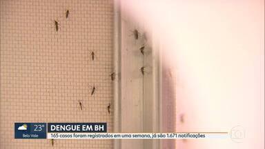 Belo Horizonte tem 1.671 casos de dengue - Doença não para de crescer na capital
