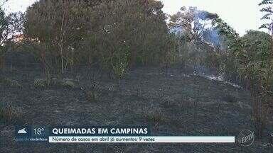 Número de queimada no mês de abril em Campinas cresce em 700% em relação ao ano passado - Moradores próximos aos casos de incêndio se preocupam com o risco de contrair problemas respiratórios.