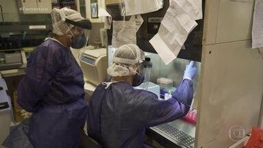 Casos de Covid-19 podem passar de meio milhão e apenas 8,9% são detectados, diz estudo - Em países onde a testagem é grande e começou cedo, a mortalidade da doença é de 1,3% dos infectados. No Brasil, é de quase 7% dos casos já registrados.