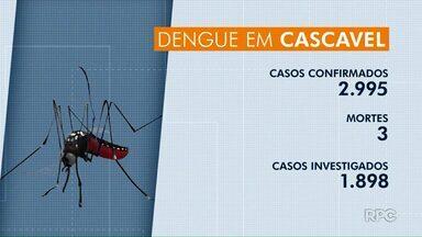 Jovem de 21 anos é a terceira vítima da dengue em Cascavel - No Paraná, já são 111 mortes.