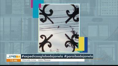 Telespectadores participam da campanha #paraíbadajanela - Participe da #expediçãoglobodajanela, que reúne fotos de todo o país.