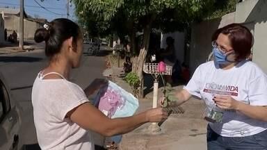 Ação CoronaVIDA homenageia as mães pelo dia delas em Bauru - A prefeitura de Bauru (SP) realizou, através da campanha CoronaVIDA, uma ação especial para comemorar o Dia das Mães na tarde deste sábado (9).