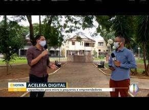 Sebrae Minas intensifica suporte a micro e pequenos empreendedores durante pandemia - A entidade vai capacitar esses profissionais por meio do projeto Acelera Digital.