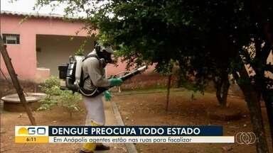 Agentes fazem combate ao mosquito Aedes aegypti, em Anápolis - Desde o início da quarentena, números de caso da dengue diminuiram.