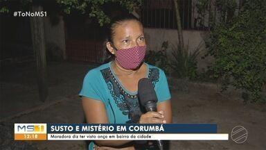 Moradora de Corumbá diz ter visto onça em bairro da cidade - Município pantaneiro já teve outros registros do felino na área urbana