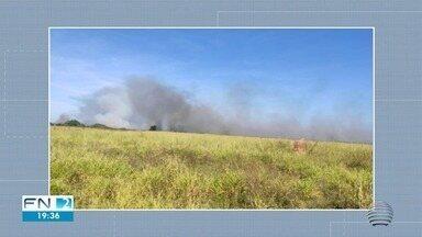 Incêndio atinge área de reserva ambiental em Presidente Epitácio - Local já foi alvo do fogo em 2019.