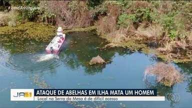 Bombeiros continuam tentando resgatar cadela que está ilhada no Lago Serra da Mesa - Paulo de Matos, de 67 anos, morreu picado por abelhas ao tentar salvar cachorrinha.
