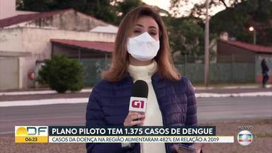 Casos de dengue aumentam no Plano Piloto - Região tem 1.375 registros. Casos aumentaram 482% em relação ao mesmo período do ano passado.