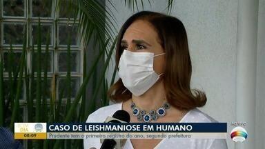 Ações contra a leishmaniose são realizadas em Presidente Prudente - Cidade tem o primeiro registro do ano em humano, segundo Prefeitura.