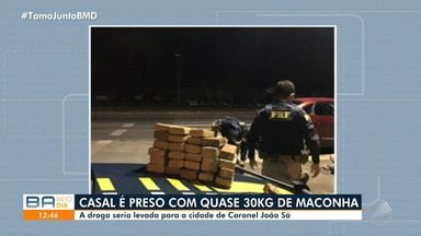Casal é flagrado e preso com quase 300 kg de maconha na BR-116, em Itabuna - A droga seria levada para a cidade de Coronel João Sá.