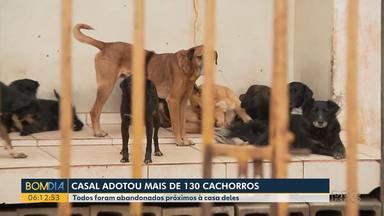 Casal adota mais de 130 cachorros - Todos foram abandonados perto da casa deles.