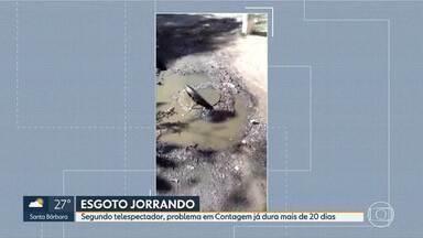 Esgoto escorre pelas ruas de Contagem - Morador do Bairro Maria da Conceição, em Contagem, pede solução para problema que já dura mais de 20 dias