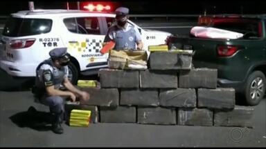 Polícia apreende mais de 280 quilos de maconha em rodovia de Marília - Após perseguição a uma caminhonete na SP-333, veículo se chocou contra proteção metálica e suspeito conseguiu fugir para uma área de mata. Foram achados no carro, que era roubado, mais de 400 tabletes de maconha.