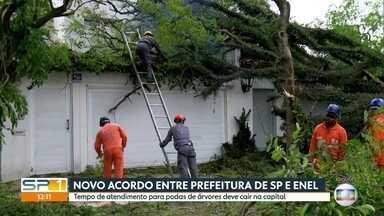 Prefeitura de São Paulo e Enel fecham acordo para poda de árvores - Intenção é reduzir o tempo entre o pedido da poda e a solução do problema. Segundo prefeitura, este seria a maior questão de zeladoria da cidade.
