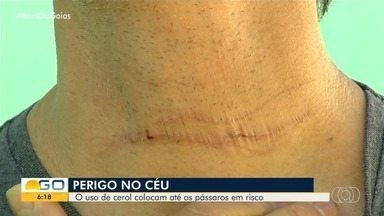 Linha com cerol fere humanos e animais em Goiânia - Autoridades alertam para o perigo do equipamento.