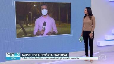 Polícia Federal libera acervo que não foi atingido por incêndio, no museu da UFMG - Após uma semana de trabalhos, os locais de interesse da perícia estão isolados. A Polícia Federal ainda não sabe a causa do incêndio, que atingiu o Museu de História Natural da UFMG, em Belo Horizonte, na semana passada.