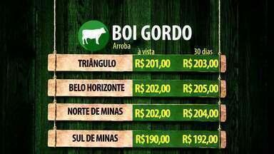 MG Rural atualiza mercado do boi gordo no Triângulo Mineiro - Veja os números em Belo Horizonte e em outras regiões de Minas Gerais.
