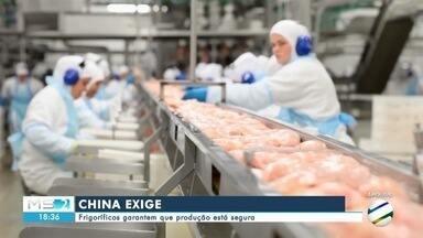 China exige e frigoríficos garantem que produção está segura - China exige e frigoríficos garantem que produção está segura