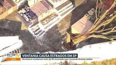 SP1 - Edição de Quarta-Feira, 01/07/2020 - São Paulo terá 12 centros de testagem da vacina por Coronavac. Por causa da ventania, árvores caem em todo o estado e ressaca afunda barcos. Entregadores pedem melhor remuneração e fim de bloqueios feitos pelos apps.