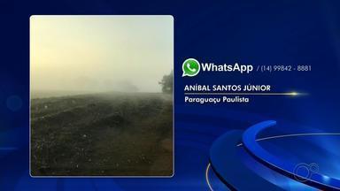 Com 7,2 ºC, Bauru tem manhã mais fria do ano; região teve registro de geada - Segundo IPMet, temperatura mínima registrada foi às 6h45 desta quinta-feira (2). O Centro Integrado de Informações Agrometeorológicas registrou mínimas de 2,9°em Assis, 5° em Ourinhos e 7° em Botucatu esta manhã. Em Paraguaçu Paulista, fotos mostram geada que atingiu a zona rural da cidade.