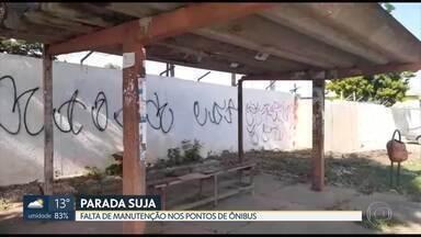 Moradores de Ceilândia reclamam da situação das paradas de ônibus - Em um dos pontos, até um cacto cresceu na cobertura.