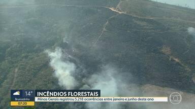 Incêndios florestais aumentam durante estação seca - Minas Gerais registrou 5.218 ocorrências entre janeiro e junho deste ano.
