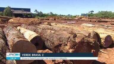 Operação Verde Brasil 2 é prorrogada pela segunda vez na Amazônia Legal - Operação é de prevenção e repressão a crimes ambientais